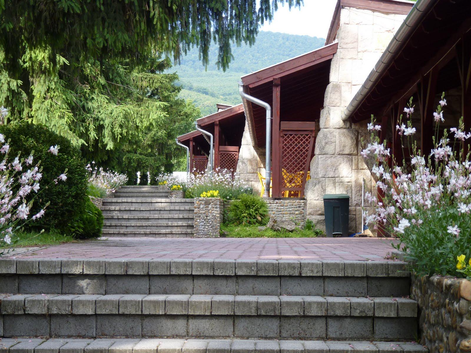 bahai-nyari-iskola-helyszine