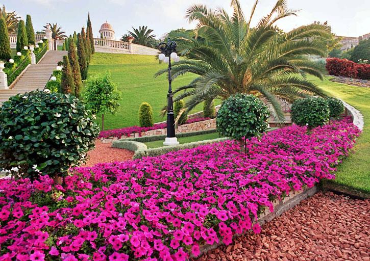 A tört agyagcserepekkel terített út színe kiemeli a virágok pompáját. (c) Bahá'í Nemzetközi Közösség media.bahai.org