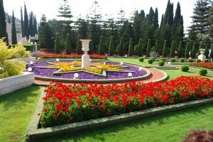 Virágok harmóniája a szép kert középső teraszán